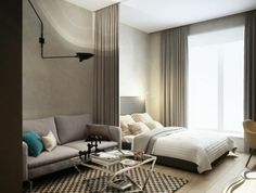 1-meubler-un-studio-20m2-sol-en-planchers-en-bois-table-design-basse-en-fer-et-verre-canapé-gris