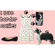 """I love border collies"" by monaruth on Polyvore"
