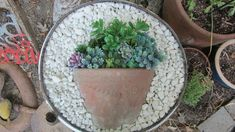 I am really inspired by all the posts making the cute pot in a pot with succulents. Succulents can be expensive, depending which ones catch your eye and just co… Water Blob, Diy Concrete Planters, Decorative Planters, Hanging Flower Baskets, Succulent Wreath, Faux Succulents, Giant Paper Flowers, Flower Pots, Washing Machine