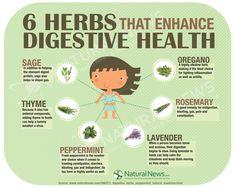 6 Herbs That Enhance Digestive Health #Digestion #Herbs #Herbal #Heal