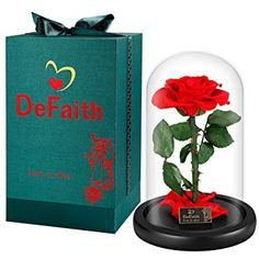 DEFAITH Real Rose 9 Beauty and The Beast Enchanted Rose in Glass Gift for Her Valentines Day Anniversary Birthday Mother Day Christmas – Red, 9 H x 6 D