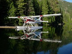 DHC-2 Beaver at rest.