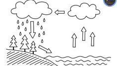 Ciclo del agua para colorear muy interesante para primaria Earth Science Activities, Science Worksheets, Preschool Education, Early Education, Worksheets For Kids, Science For Kids, Preschool Activities, Weather Kindergarten, Teaching Kindergarten