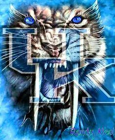 Kentucky College Basketball, Uk Wildcats Basketball, Kentucky Sports, University Of Kentucky, Kentucky Wildcats, Uk Football, Kentucky Girls, Kentucky Athletics, Sports Basketball