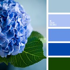 Blue color inspiration All shades of blue