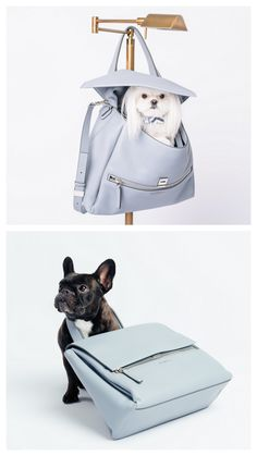 Why, hello there! The perfect Givenchy bag for Spring. #barkdorfs in collaboration with PurseBlog. Photo by Vlad Dusil