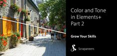 Part 2 Reviewing Elements+ Color and Tone