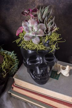 Keep it spooky with these DIY black Halloween skull planters. Halloween Flowers, Halloween Lanterns, Halloween Skull, Halloween House, Holidays Halloween, Haunted Halloween, Halloween 2019, Halloween Party, Chic Halloween Decor