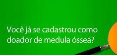 Medula Óssea - Ameo
