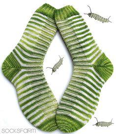 Caterpillar+2.png 805 × 932 pixlar