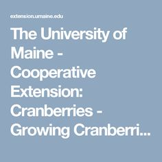 The University of Maine - Cooperative Extension: Cranberries - Growing Cranberries in the Garden