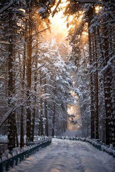 # Snow Road, Novosibirsk, Russia