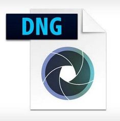 Learn the Simple Method to Repair DNG Files Immediately Operating System, Software, Pc