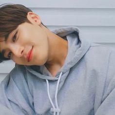 Mingyu Wonwoo, Seungkwan, Woozi, Kpop, Kim Min Gyu, Mingyu Seventeen, Seventeen Wallpapers, Meanie, Wattpad