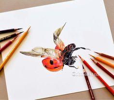 Beautiful colored pencil works by Sallyann Biophilicart