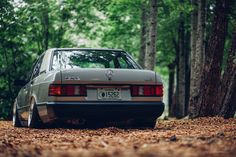 This Benz is a daily 5 speed. This photo was taken in a set of woods along a river in Helen, Georgia. Mercedes Benz 190e, Mercedes 190, Classic Mercedes, Daimler Ag, Daimler Benz, Old School Cars, C Class, Maybach, Mustang Cars