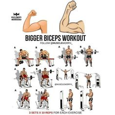 Here we shared with you step by step Workout (tips) guide tutorial. How to make your workout more perfect and just a right way. The workout probably makes your health massive, Big Biceps Workout, Back And Bicep Workout, Forearm Workout, Step Workout, Gym Workout Tips, Shoulder Workout, Bicep Gym, Fitness Workouts, Weight Training Workouts