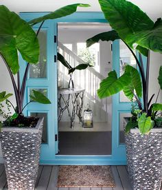 love the color of this front door with the glass accents on the side - also love these potted plants - and pewter color table in the entrance