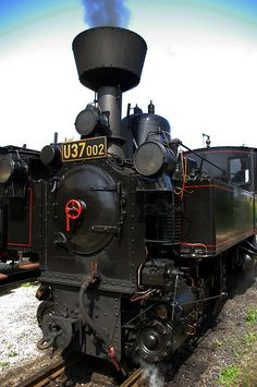 Nove Bystrice Narrow Gauge Steam Train 119 | Flickr - Photo Sharing!