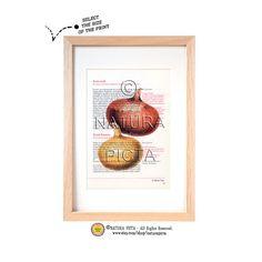 Kitchen Wall Art Onions art printVeggies art by naturapicta, $9.99 © NATURA PICTA All Rights Reserved