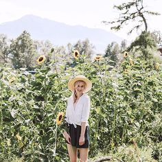 Sunshine + Swiss sunflower flower fields... I live for moments like this one 🌻 . And I'm reliving it all over again on the blog today! Go take a peek to get yourself into that pre-weekend vibe! (Link in bio)