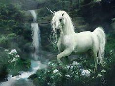 Bearded elemental fire, elemental water, elemental wind, pegasus, pure white, wild, dark, or imaginary?