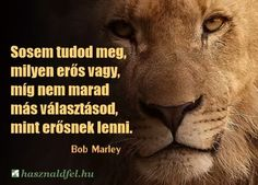 A quote from Bob Marley about power. Image source: Use It- Bob Marley idézete az erőről. A kép forrása: Használd fel A quote from Bob Marley about power. Image source: Use It - Bob Marley, Love Me Quotes, Life Quotes, Powerful Words, Positive Thoughts, Cool Things To Make, Cool Words, Karma, Einstein