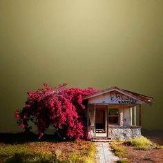 moody desert shack - Google Search