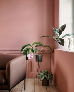 Ferm Living wows me again with their new AW 2017 collection. Lots of greens and soft pink shades. And one of my Ferm Living favourites, the Plant Box now comes with a Brass Tray. With this tray, your plant box gets a lid on a third of… Decor, Interior Trend, Interior Inspiration, Scandinavian Home, My Scandinavian Home, Interior Design Trends, Home Interior Design, Pink Walls, Wall Color
