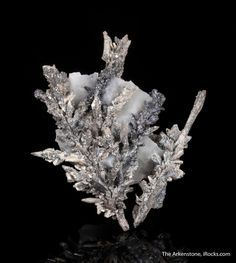 Allargentum and Silver pseudomorph after Dyscrasite, Bouismas Mine, Bou Azzer District, Tazenakht, Ouarzazate Province, Morocco , Miniature, 5.0 x 4.7 x 1.5 cm, Spectacular, dendritic growth on a natural pedestal of contrasting calcite, of allargentum and silver., For sale from The Arkenstone, www.iRocks.com. For more details on this piece and others, visit http://www.irocks.com/minerals/specimen/45195