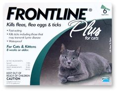 Merial Frontline Plus Flea and Tick Control for Cats and Kittens  6 Doses: http://www.amazon.com/Merial-Frontline-Control-Kittens-Doses/dp/B0002J1F7G/?tag=theaffilia046-20