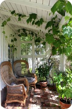 Green room: like a green house, but not. Would make for a great reading room or breakfast nook, too!
