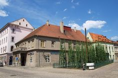 Saaz/Zatec - the smallest hop field in the world Mansions, World, House Styles, Places, Home Decor, Decoration Home, Manor Houses, Room Decor, Villas