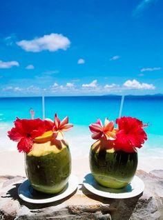 bleeding, Frégate, Getranke, island, isle, coconut, Seychelles, beach holidays, symbol, Tropengetrank,