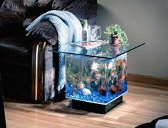 41 Stunning Aquarium Feature On Coffee Table Design Ideas. The hobby of keeping and maintaining an aquarium has become very popular as it takes very little space and this hobby can be maintained by al. Aquarium Diy, Acrylic Aquarium, Mini Aquarium, Aquarium Design, Aquariums Super, Amazing Aquariums, Coffee Table Furniture, Coffee Table Design, Coffee Tables