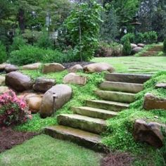 Stone steps with beautiful ground cover, stepping stones in grass above