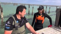 Great The Australian seafood Episode 8 Coffin Bay Oysters, ,