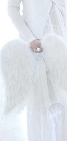 Angel Wings ~ White and Shabby Christmas Colors, White Christmas, Merry Christmas, Christmas Angels, All White, Pure White, Snow White, White Magic, Winter White