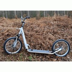 DAX-Scooter  KICK-bikes seems to be a coming thing.