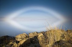 A 'fogbow'. Great Lake, Tasmania.  Just as sunlight refracted by raindrops forms rainbows, light passing through fog can form 'fogbows'.