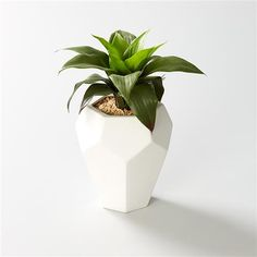 Plastic Agave Plant in Geometric Pot Home Accessories Fake Plants, Artificial Plants, White Room Decor, Bedroom Decor, Bedroom Ideas, Teen Bedroom, Decorative Accessories, Home Accessories, Pots