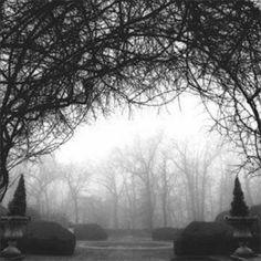 landscape photography black and white - Google Search #LandscapeBlackAndWhite