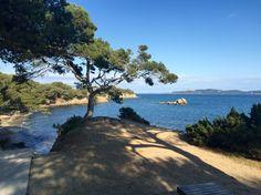 Presqu'île de Giens Provence, Port Cros, Palmiers, Archipelago, France, Celestial, Sunset, Beautiful, Beach