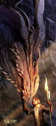 I love seeing the bond between dragons and humans... if only dragons were real