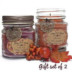 Fall Scented Jar Candles Gift Set of 2 -Natural Soy Wax Blend - Autumn Fragrances of Spicy Pumpkin and Sassy Sangria- Fragrant, Long Lasting 40  Hrs. each -Best Scented Candles for Fall Home Decor