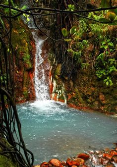 Hot waterfall and pool on Boiling Lake trail. Color of rocks is due to minerals in the water. Dominica, West Indies