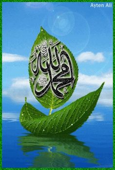 Animated Photo Allah Wallpaper, Islamic Quotes Wallpaper, Allah Islam, Islam Quran, Allah God, Islamic Images, Islamic Pictures, Happy Ramadan Mubarak, Iphone Wallpaper Video