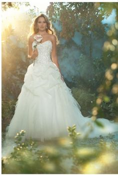 Sleeping beauty disney wedding dress..Disney has a line of wedding dresses inspired by princesses!!! this is amazing!