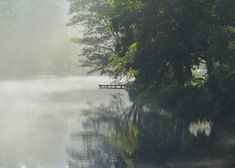 Early morning mist over the lake. #autumn ....#weddingvenue #lake #barnwedding #browsholme #lancashire #wearelancashire #familyhome #sustainable #historic #heritage #rural #tourism #historichouse #history #ribblevalley #forestofbowland #bride #weddingphotography #countryside #countrywedding #browsholmehall #rustic #rusticwedding #farmwedding #gardens #trees