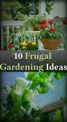 The kids will be gardening this year. Some of these are great ideas!
